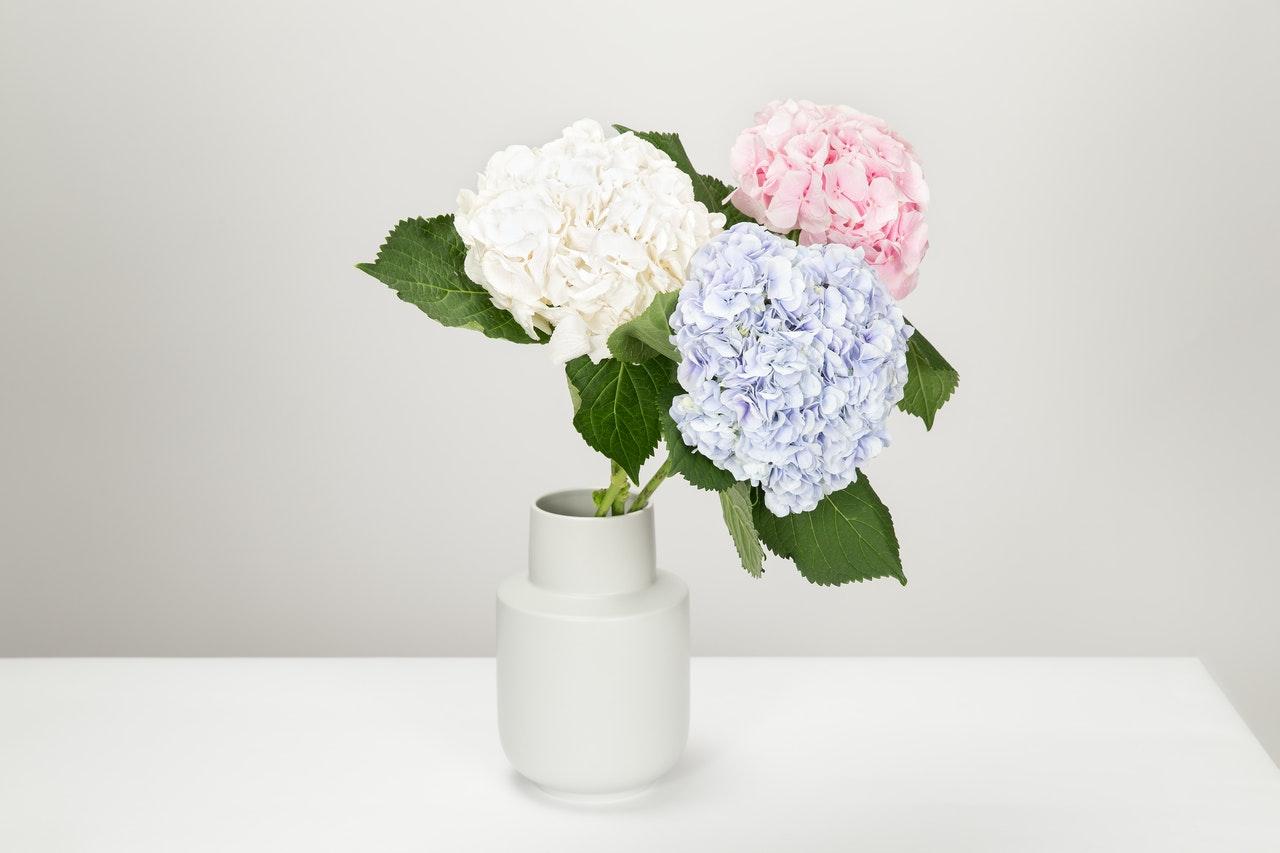 vase med flotte blomster i på bord
