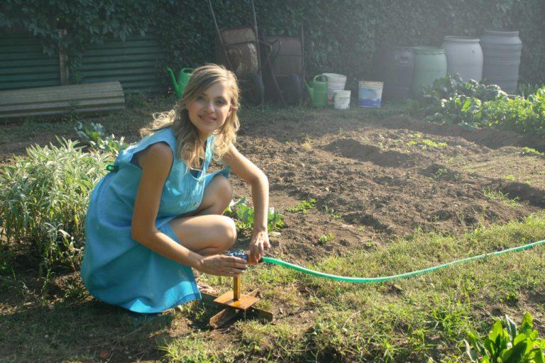 Brug dit haveaffald som brænde i din pejs